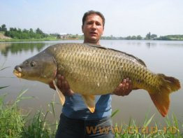 Concursul de pescuit la crap