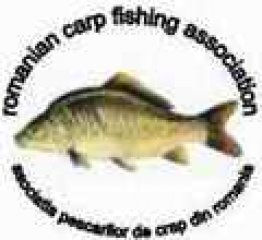 Cupa Cupelor - Editia 1 - Hobaia 2005