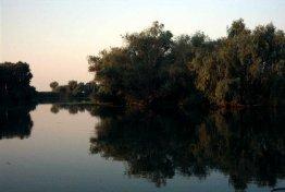 Taxe in Delta Dunarii
